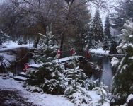 SnowPond5_4x5x300