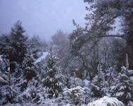 Snow_4x5x300